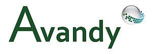 Avandy Logo